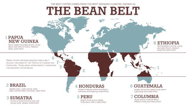Bean belt je pojas oko Zemlje u kojem raste sva svjetska kava. Ako ste se pitali zašto kave uvijek dolaze iz istih zemalja, eto objašnjenja. Ni u jednom drugom dijelu svijeta klima nije pogodna za njen uzgoj
